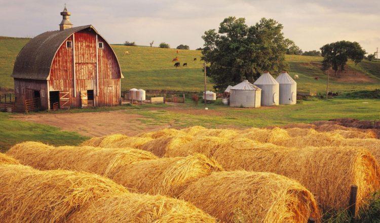 Mezőgazdasági kisüzemek fejlesztése (6.3.1.) | MATERal Cégcsoport ...